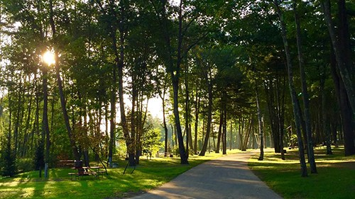 Hid'n Pines RV Resort, Vacation Rentals and Campground Walking Path in Old Orchard Beach, ME