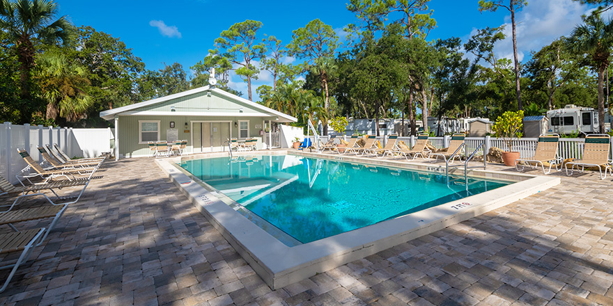 Naples RV Resort Swimming Pool